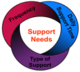 SIS Support Needs